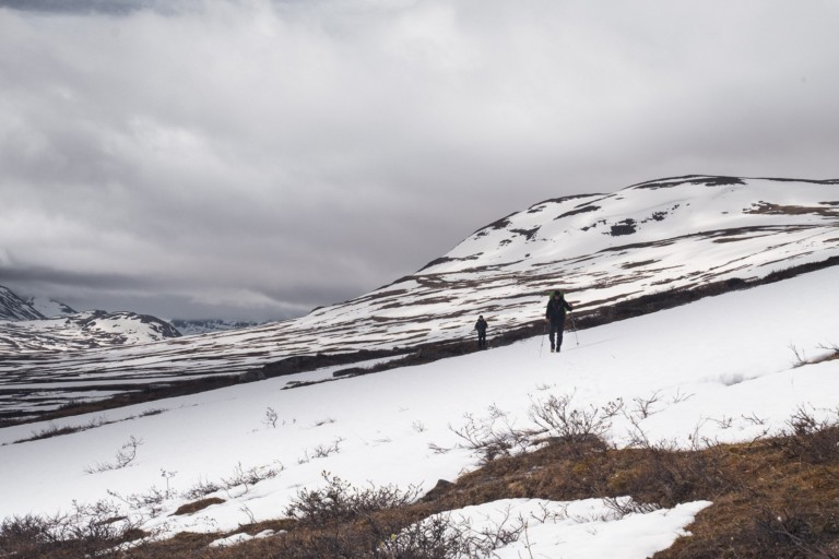 Into the Wild - Laponie
